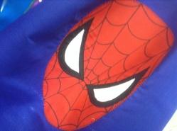 Spider-Man cape